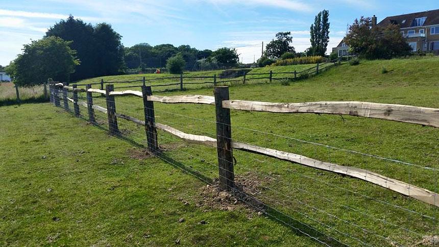 Chestnut Littlewood Fencing South East