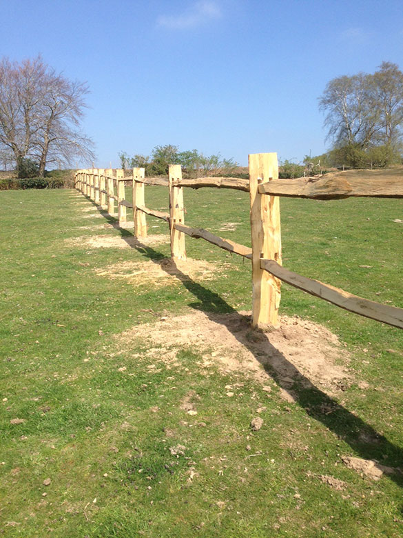 Chestnut Littlewood Fencing South East