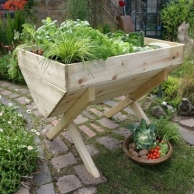 Vegetable Beds - 1 Thumbnail